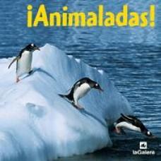 ¡Animaladas!